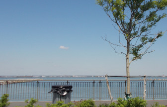 The view from the uncompleted, unopened park on the East River waterfront.