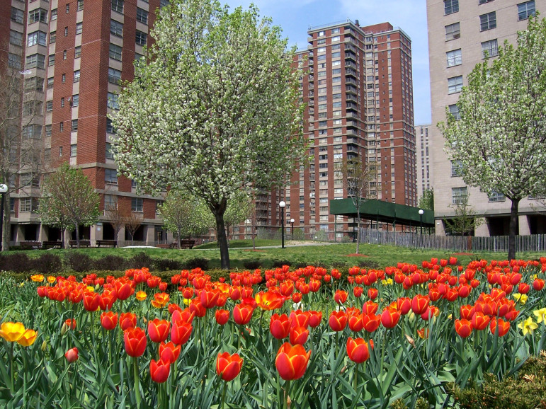 The massive Co-op City complex in the Bronx was built under the Mitchell-Lama program.