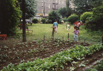 Op-Ed: Stop the Tax-Lien Sales That Will Destroy Community Gardens