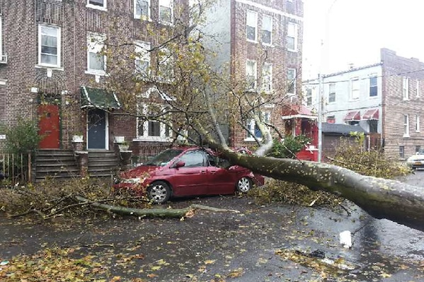 A downed tree at 1260 Wheeler Avenue between 172nd Street and Westchester Avenue took out a car and blocked the block.