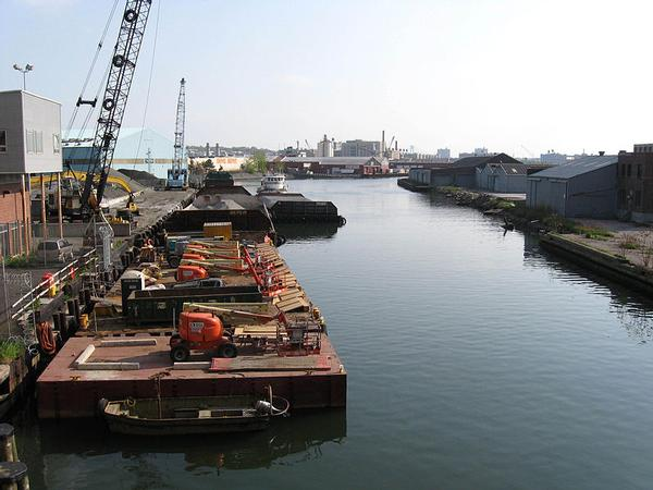 The Gowanus contains PCBs, PAHs and seven metals in concentrations that pose a risk to human health.