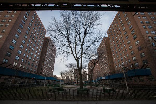 Some 18,000 Brownsville residents live in public housing, but no development is larger than Van Dyke 1, which boasts 22 buildings and more than 4,000 residents.