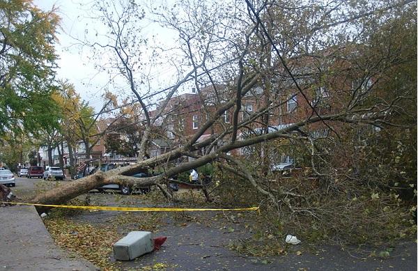 Storm damage on East 21st Street